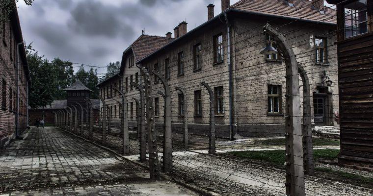V Osvienčime experimentovali na ľuďoch aj iní lekári než Mengele
